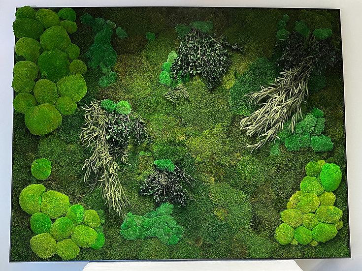 Moss Garden Frame