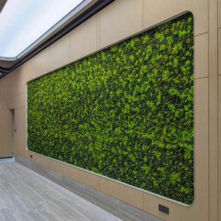 Moss Wall Inspiration 18