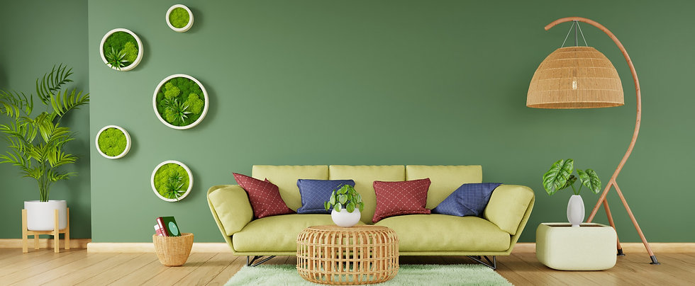 Picture of round moss frames hung on a living room wall