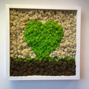 Moss Frame Inspiration 9