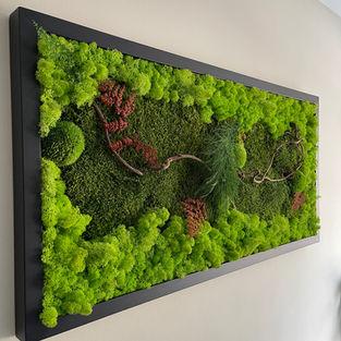 Moss Frame Inspiration 6