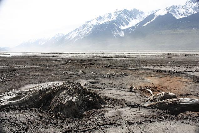 mudflats andru.JPG