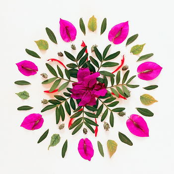 Natural flower mandala made of fresh pla