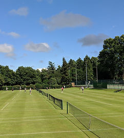 tennisw1.jpg