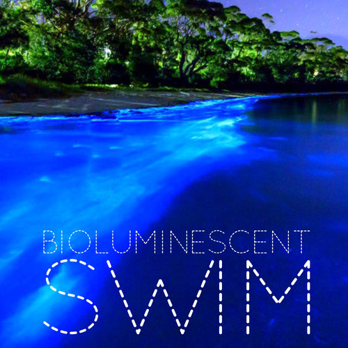 Book a biolumiescent swimming adventure at Manialtepec!