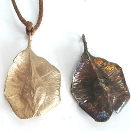 Seed Pod Terminalia , Brass Medium