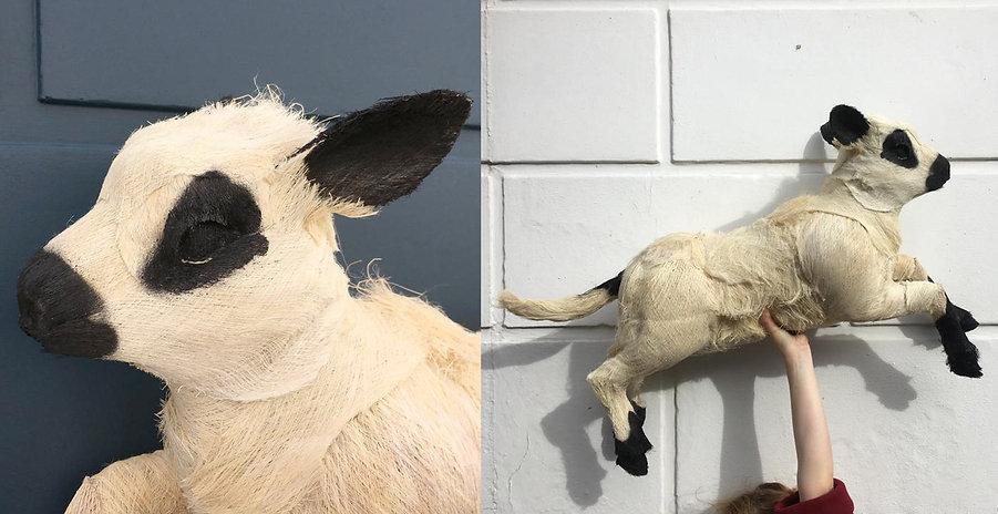 Lamb web.jpg