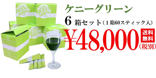 購入 48000円