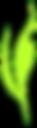 ケニーグリーンロゴ