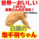 S__37928982サイズ変更.jpg