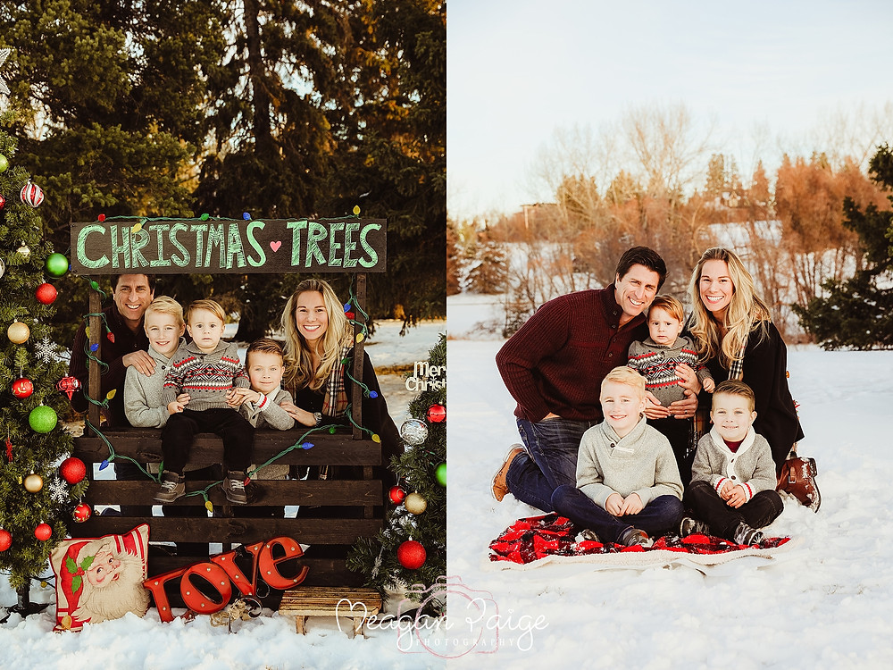 Christmas Tree Mini Photo Sessions In Confederation Park