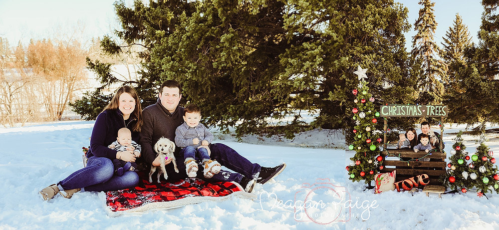 Outdoor Christmas Mini Sessions - Calgary Photographer