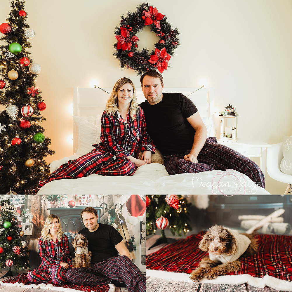 Indoor Christmas Mini Sessions - Calgary Pet Photographer