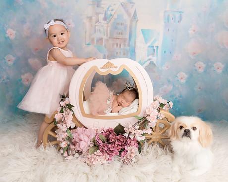 2Calgary Newborn Photographer - Meagan P