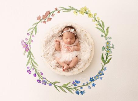 Rainbow Baby Newborn Session - Calgary Newborn Photographer