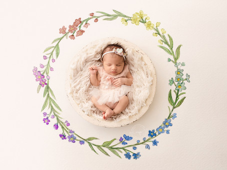 Rainbow Baby Newborn Session - Calgary Newborn Photographer