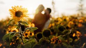 Calgary Portrait Photographer | Brooke's Sunflower Couples Session