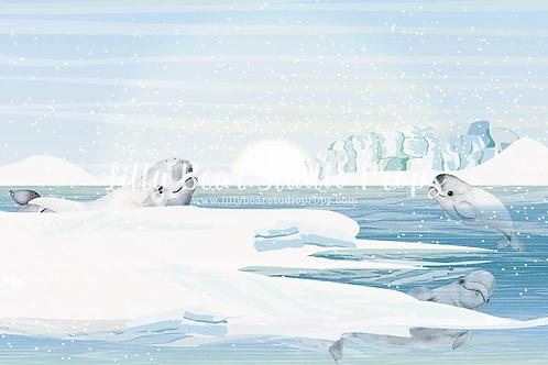 Arctic Adventure - DISCOUNTED CAKE SMASH