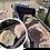 Thumbnail: Mojave Gold