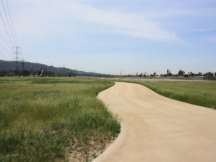 Running path- DG