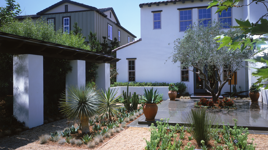 Front courtyard top dressing