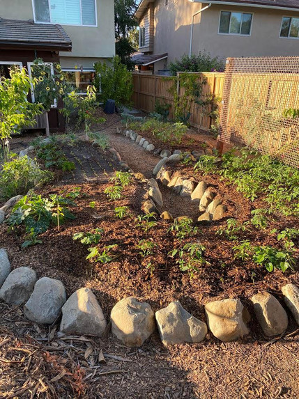 Garden ammenities border