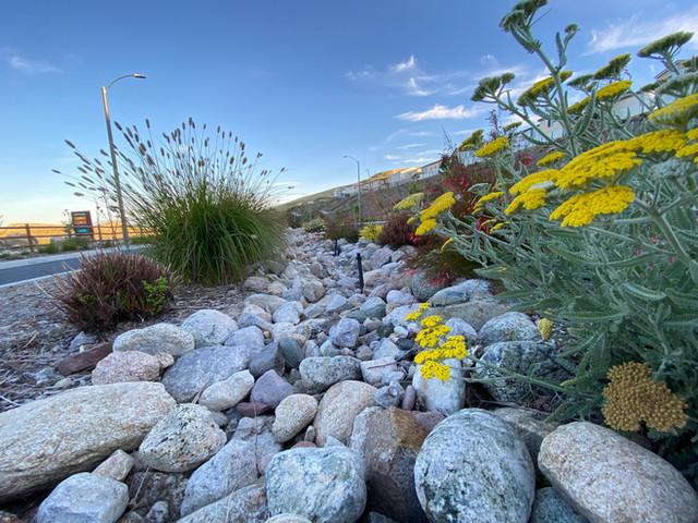 Cucamonga cobble dry creek