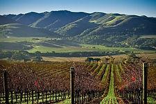 Santa Barbara wine region_1.jpg