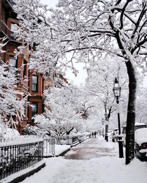 Boston winter snow brownstone