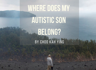 A Crowdfunding Project with a Purpose: Where Does My Autistic Son Belong? Book by Choo Kah Ying