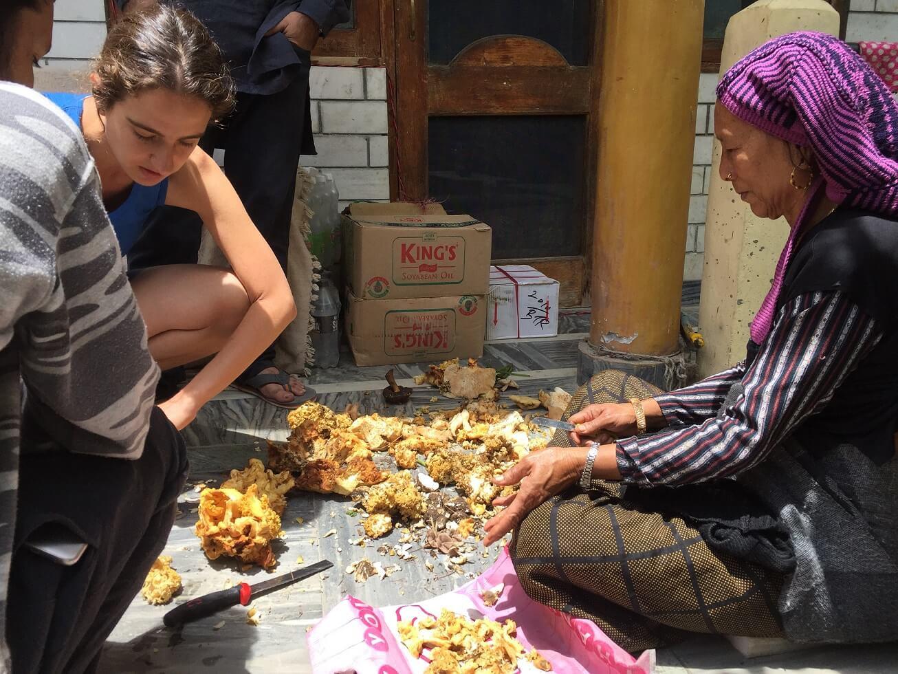 ליקוט פטריות עם המומחית הנפאלית