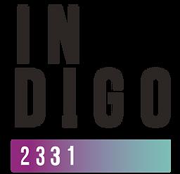 Indigo - línea gráfica-02.png