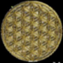 adesivi-sacrale-simbolo-fiore-della-vita