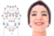 Face segments master.png
