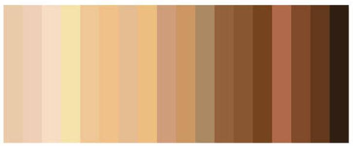 Skin Tone color set.jpg
