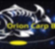logo with Orion back ground no website.j