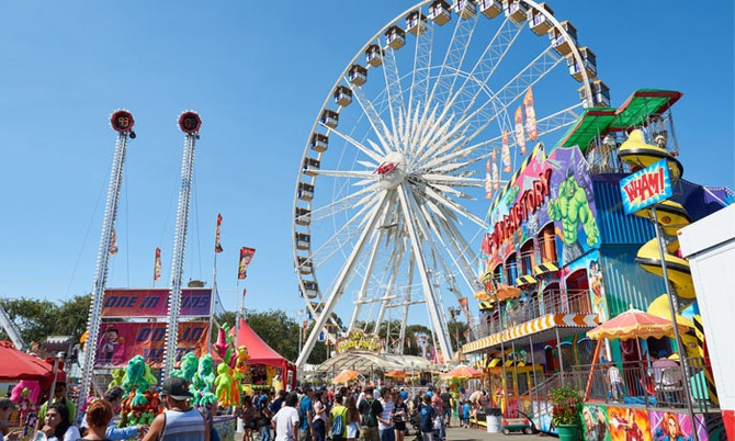 Irvine Brings Home Ribbons from OC Fair