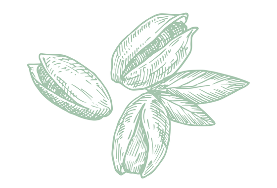 Pistaches transparent.png