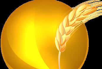 logo (без фона).png 2014-6-30-17:7:27 20