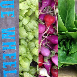 Access to Affordable Organic Produce