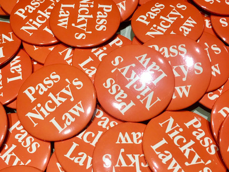 Nicky's Law Reported Favorably from Committee