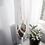 Thumbnail: Small Plant Hanger