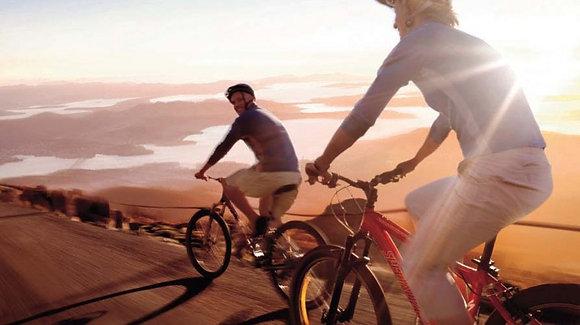 MOUNT WELINGTON DESCENT CYCLE TOUR