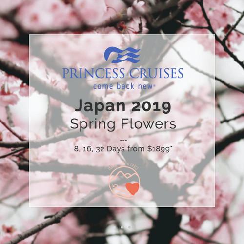 Japan Spring Flowers Princess Cruises