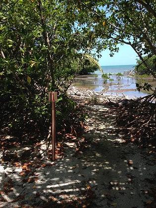 Caribbean Beach Conservation1