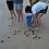 Sri Lanka - Sea Turtle Rescue and Rehabilitation2