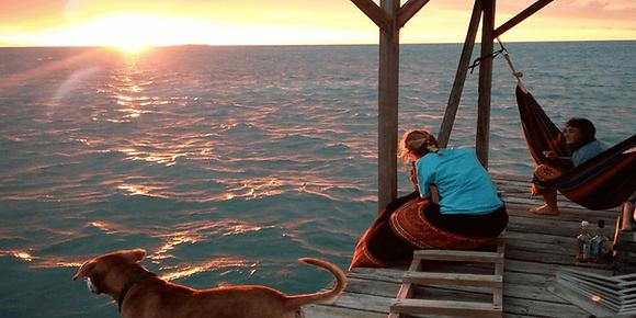 Belize Marine Conservation & Diving1
