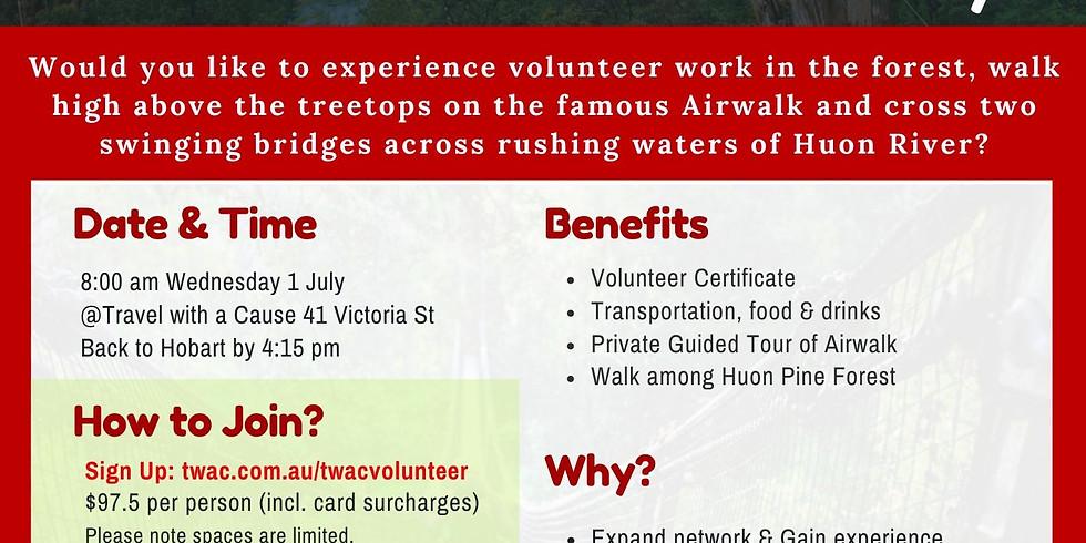 Tahune Airwalk Volunteer Day (1)