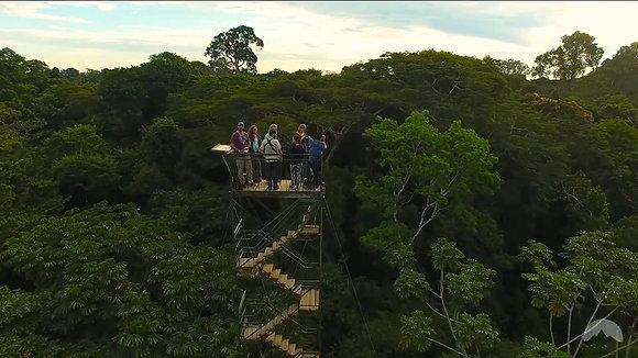POSADA AMAZONAS