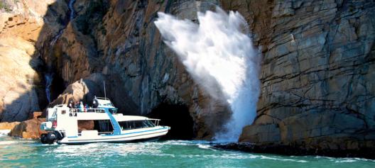 Maria Island One Day Cruise & Tour